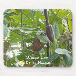Cacao Tree, Kauai, Hawaii Mouse Pad