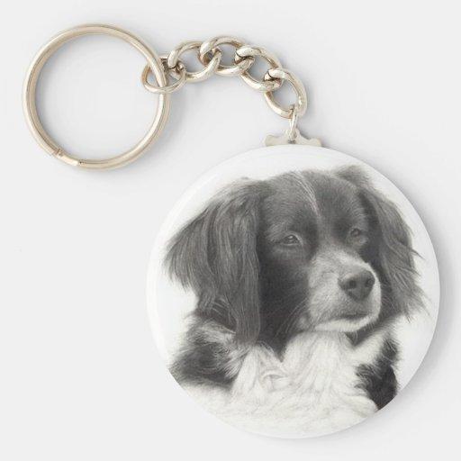 Cachorro - diversos key chain