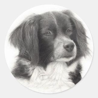 Cachorro - diversos round sticker