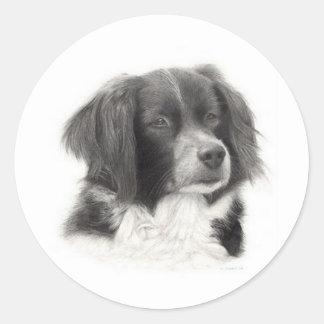 Cachorro - diversos round stickers