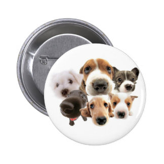 Cachorros Pinback Buttons