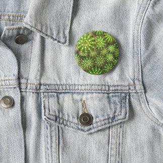 Cacti close up Badge