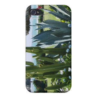 Cacti In Mexico iPhone 4/4S Cases