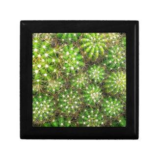 Cacti Jewellery/Gift Box