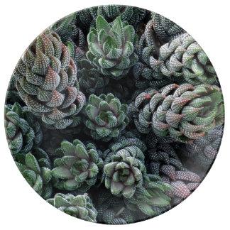 """Cactus 10.75"""" Decorative Porcelain Plate"""