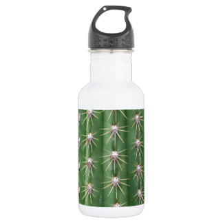 Cactus 532 Ml Water Bottle