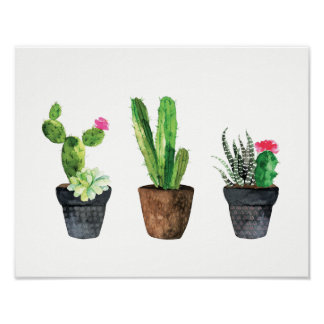 Cactus and Succulent Trio Two Poster