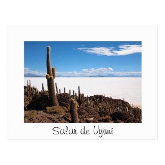Cactus at the Salar de Uyuni text border postcard