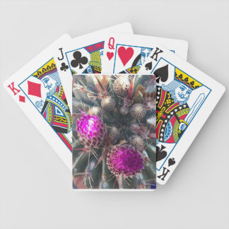 Cactus blossom bicycle playing cards