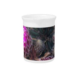 Cactus blossom pitcher