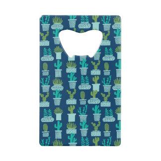 Cactus Blue Terrarium Succulent / Andrea Lauren
