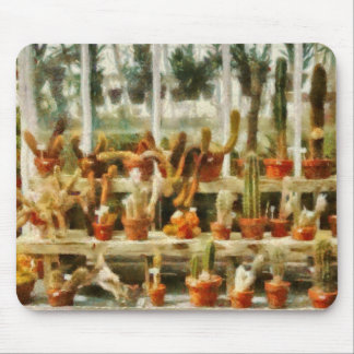 Cactus - Cactus for sale Mouse Pad