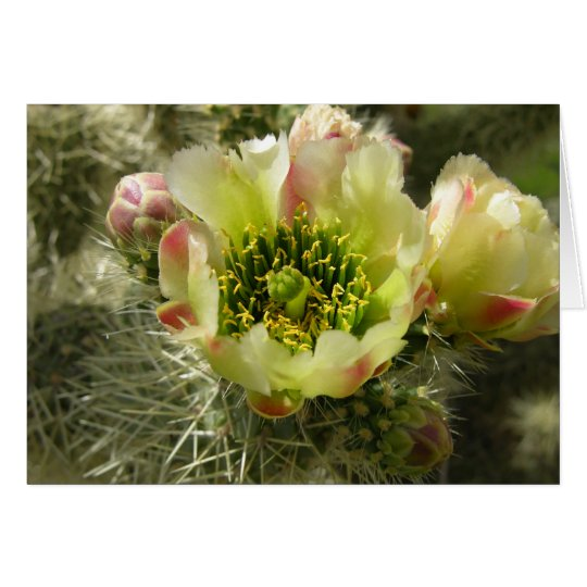 Cactus Flower Card