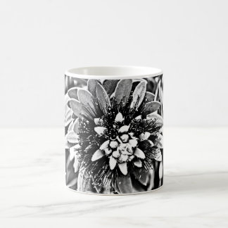 Cactus Flower in Black and White Classic Coffee Cu Coffee Mug