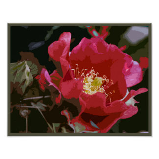 Cactus Flower Stylised Wall Art Poster