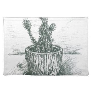 cactus, flowers, nature , plants , pot, magic place mats
