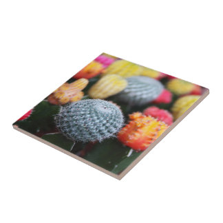 Cactus, Flowers, Spines - Pink Green Blue Yellow Tile