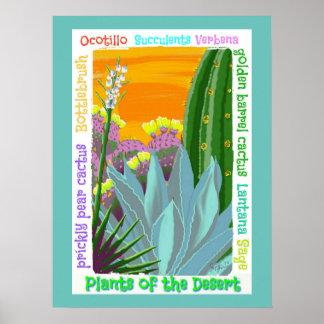 Cactus Garden poster