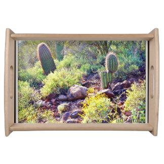 Cactus Garden Serving Tray