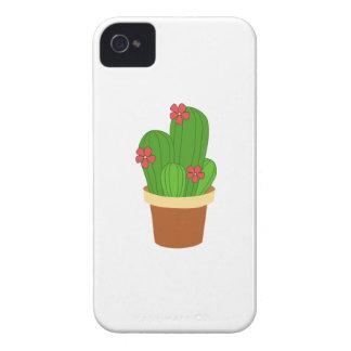 cactus iPhone 4 case