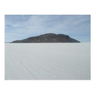 Cactus Island Postcard