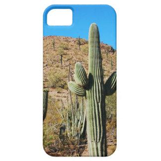 Cactus landscape iphone 5 case