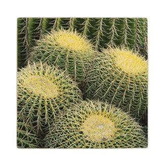 Cactus Pattern Maple Wood Coaster