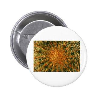 Cactus Picture Pinback Button