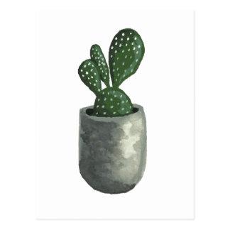 Cactus Postcard