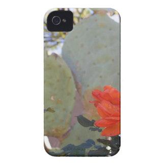 Cactus Rose iPhone 4 Cases