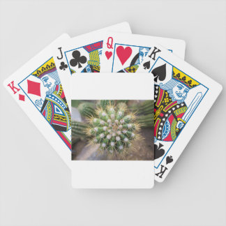 Cactus Top Bicycle Playing Cards