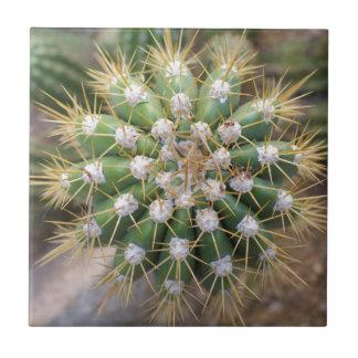 Cactus Top Ceramic Tile
