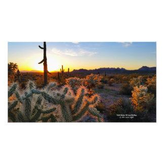Cactus with Arizona sunset Superstition Wilderness Photo Print