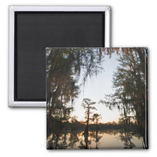 Caddo Lake at sunrise Magnet