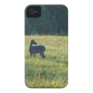Cades Deer iPhone 4 Case-Mate Cases