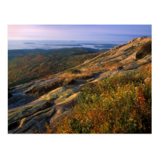 Cadillac Mountain Acadia National Park Postcard