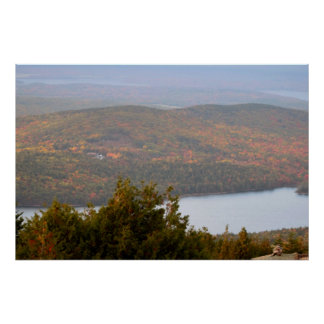 Cadillac Mountain with Trees Acadia National Park Poster