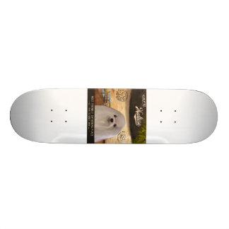 Cafe Maltese Skate Board