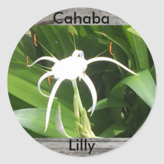 Cahaba lilly bloom sticker