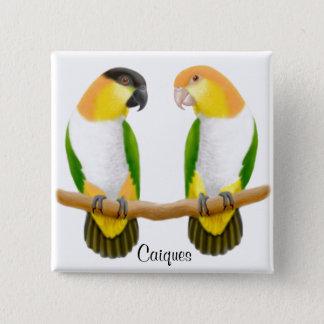 Caique Parrots Pin