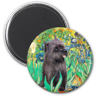Cairn (Brindle 17) - Irises Magnet