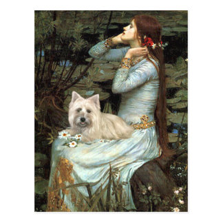 Cairn Terrier 4 - Ophelia Seated Postcard