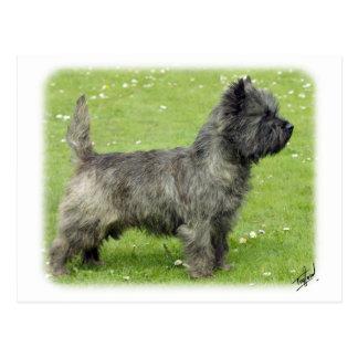 Cairn Terrier 9Y004D-024 Postcard