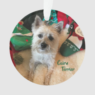 Cairn Terrier Acrylic Ornament