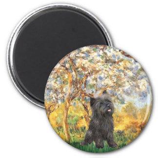 Cairn Terrier (Brindle 21) - Spring 6 Cm Round Magnet