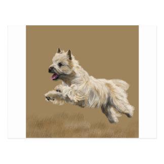 Cairn Terrier called Mackey Postcard