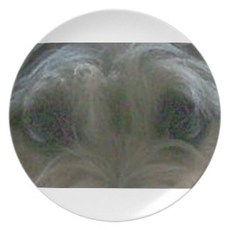 cairn terrier eyes plates