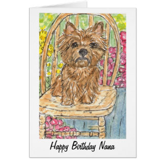 Cairn Terrier Happy Birthday Nana Card watercolour