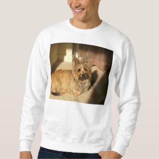 Cairn terrier laying sweatshirt