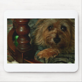 Cairn Terrier Mouse Pad